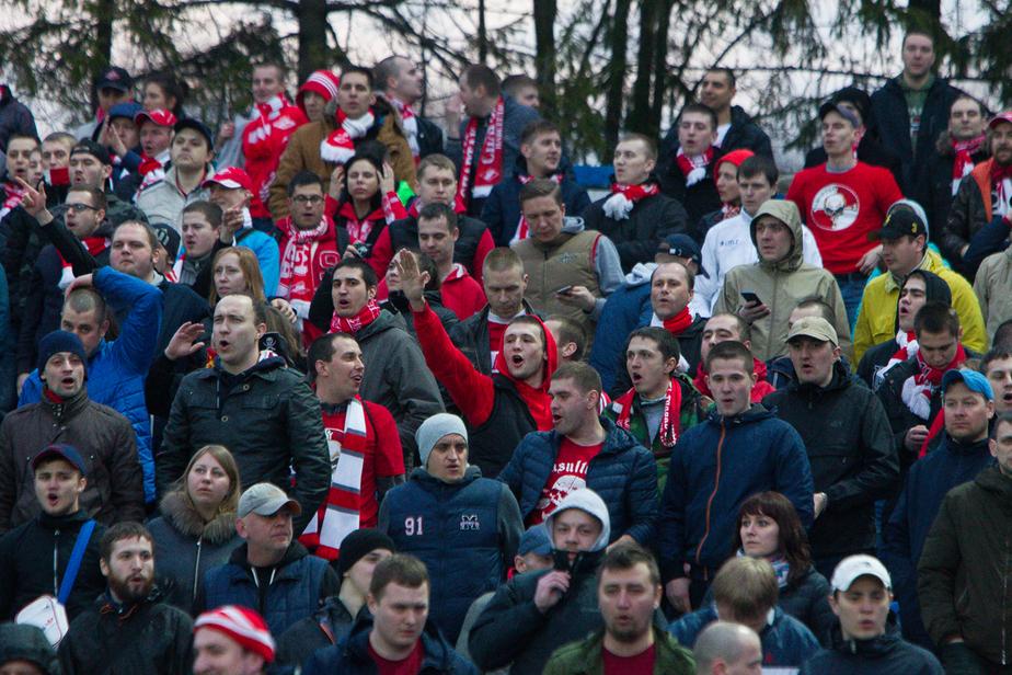 В ЛДПР предложили сделать драки футбольных фанатов видом спорта - Новости Калининграда