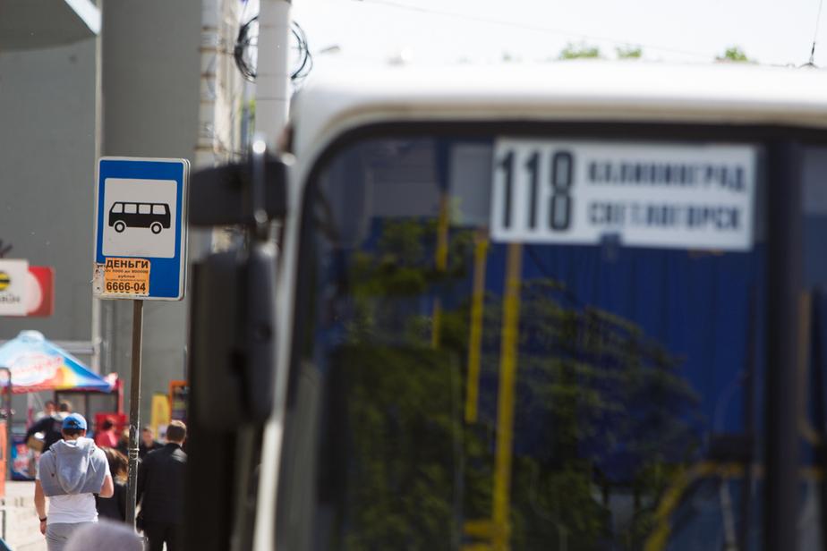 """""""Мы будем тихо умирать"""": частные калининградские автобусные компании пожаловались Путину на горвласти - Новости Калининграда"""