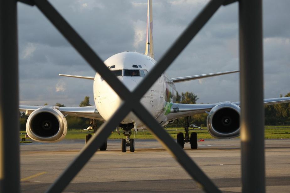Минтранс официально запретил полеты российских авиакомпаний в Египет - Новости Калининграда