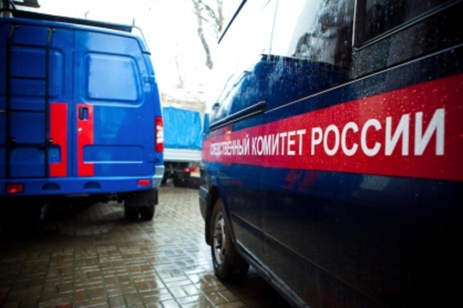 Следственный комитет начал проверку по сообщениям СМИ о мальчике, избитом опекунами - Новости Калининграда