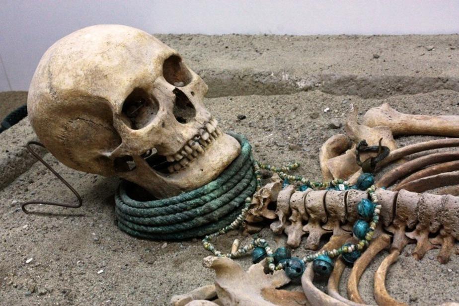 В Калининграде покажут посмертную корону прусской женщины 13-го века - Новости Калининграда