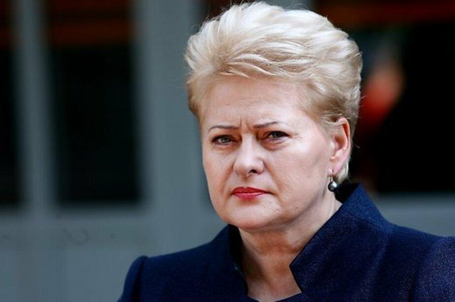 """Президент Литвы: Второй """"Северный поток"""" не должен быть построен - Новости Калининграда"""