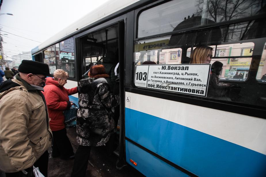 Калининградских водителей будут возить на общественном транспорте бесплатно - Новости Калининграда