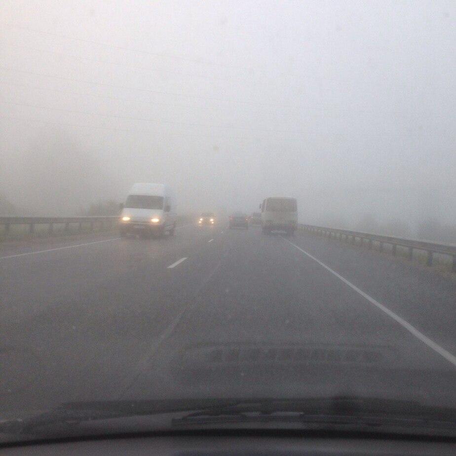 ГИБДД предупреждает калининградских водителей о дожде и туманах - Новости Калининграда