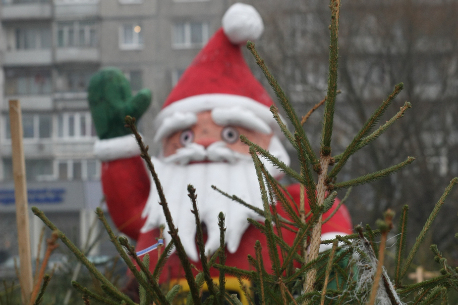 Россияне рассказали, что собираются дарить друг другу на Новый год - Новости Калининграда