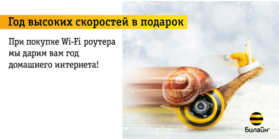 """Домашний интернет - в подарок от """"Билайн"""" - Новости Калининграда"""