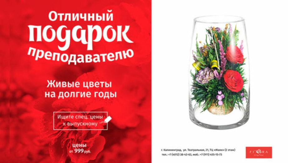 Букет будет стоять пять лет: где найти оригинальный подарок для любимого преподавателя - Новости Калининграда