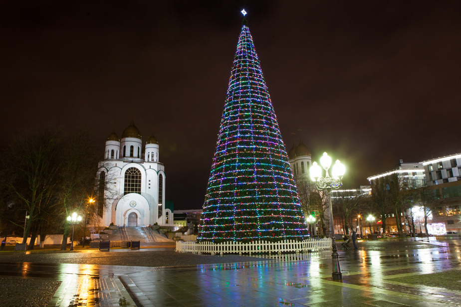 Установка и охрана двух новогодних елей обойдётся Калининграду в 220 тыс. рублей - Новости Калининграда