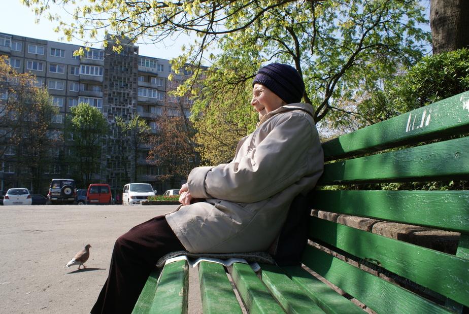 Менее трети жителей Калининграда – пожилые люди - Новости Калининграда