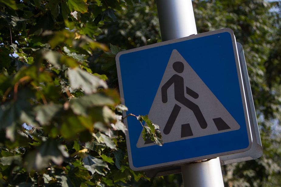 ГИБДД: каждый пятый погибший в Калининграде пешеход шёл по переходу - Новости Калининграда
