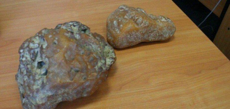 43 кг контрабандного калининградского янтаря продали на аукционе за  680 тысяч злотых - Новости Калининграда