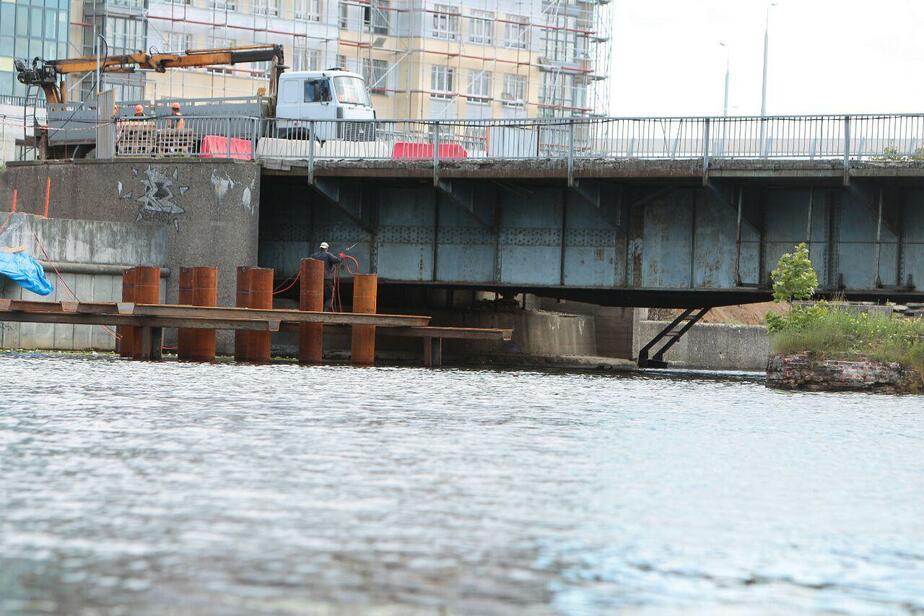 Подрядчик: Работе водолазов в районе Высокого моста мешает гигантский сом - Новости Калининграда