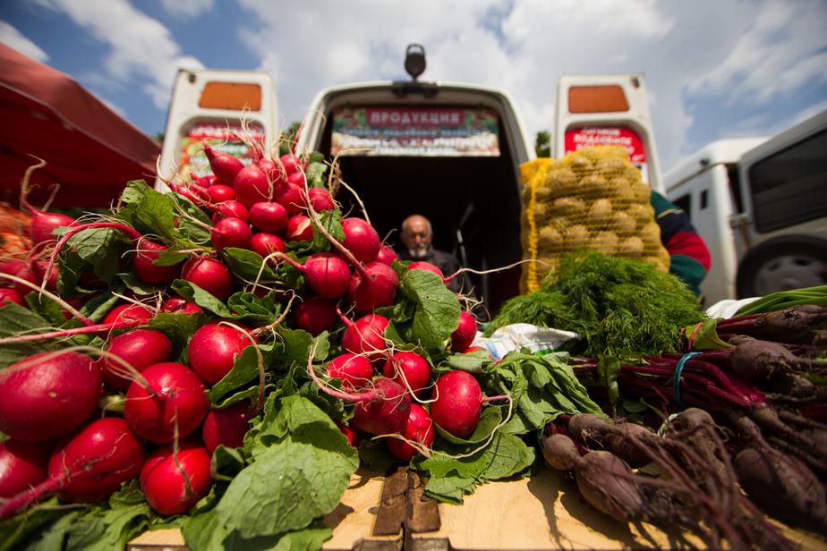 С декабря продуктовая корзина калининградцев подорожала на 20% - Новости Калининграда