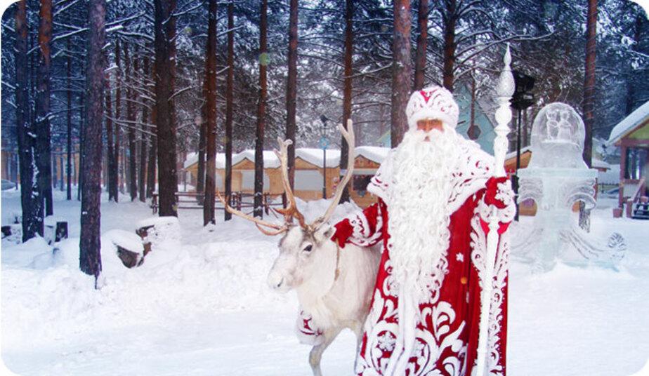 Дед Мороз из Великого Устюга навестит в Калининграде маленьких пациентов кардиохирургии   - Новости Калининграда