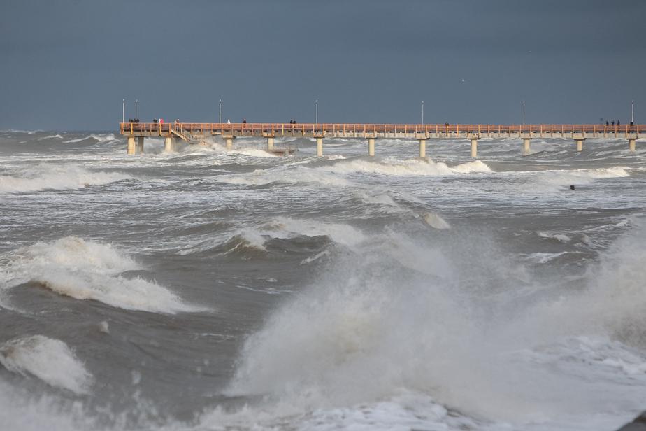 Синоптики дали прогноз по ветру в Калининграде на эту неделю - Новости Калининграда