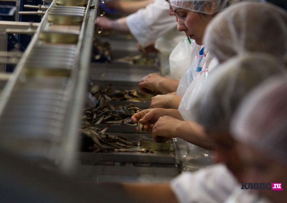 Роспотребнадзор ввел запрет на ввоз рыбных консервов ряда производителей из Латвии - Новости Калининграда