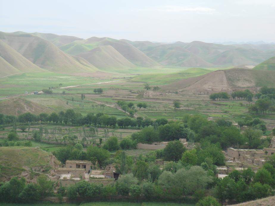 """Главарь """"Талибана"""" был смертельно ранен в Афганистане   - Новости Калининграда"""