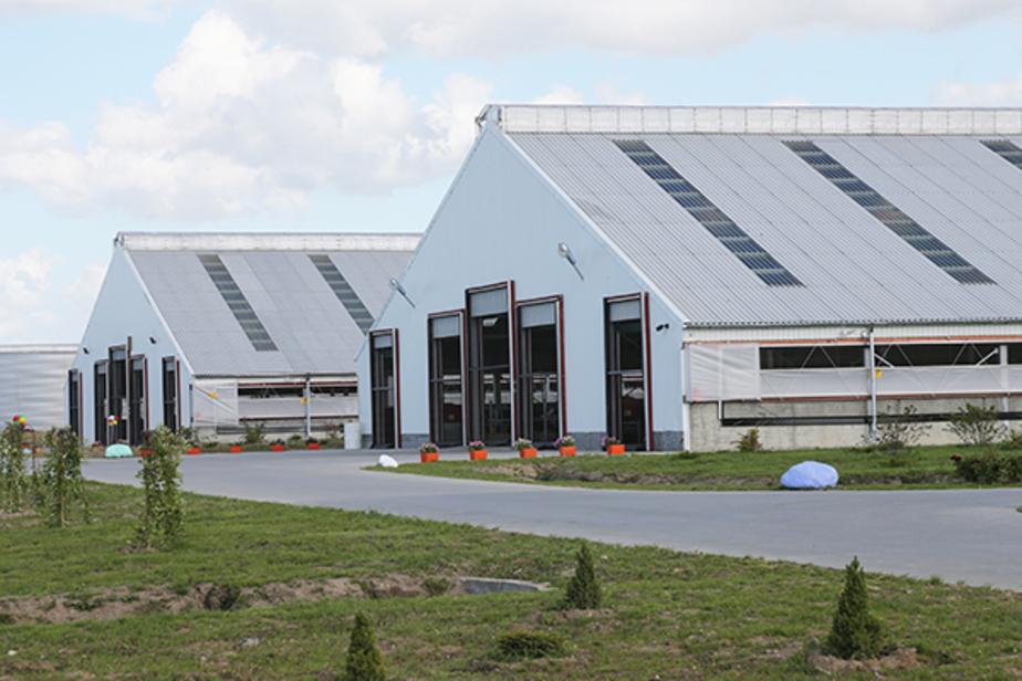 Калининградское бизнес-сообщество хочет проводить экскурсии по предприятиям области   - Новости Калининграда
