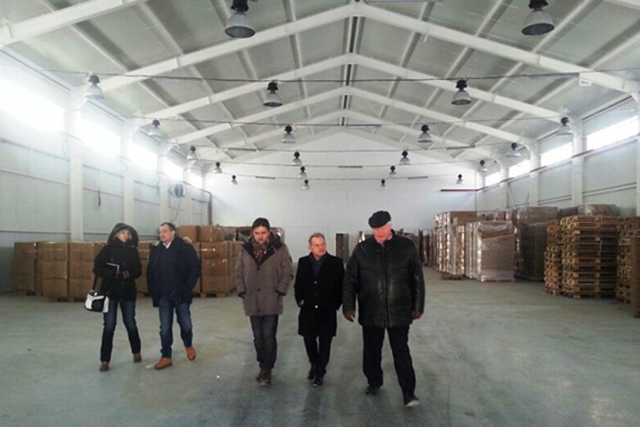 Польская компания частично переносит производство плинтусов в Калининград - Новости Калининграда