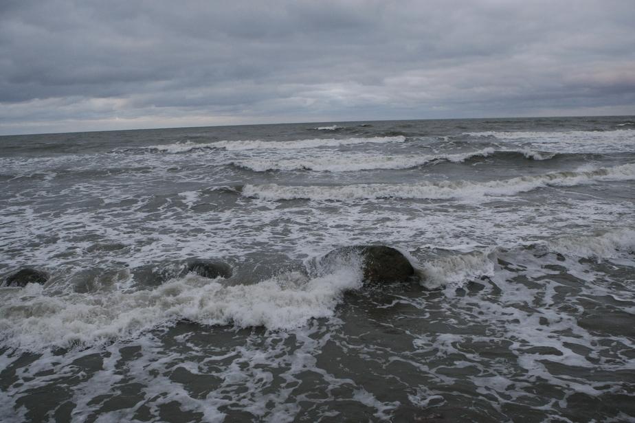 В четверг в Калининграде ожидается усиление ветра до 15 м/с - Новости Калининграда