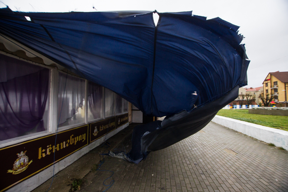 В Калининграде ветер стихнет, но ненадолго - Новости Калининграда