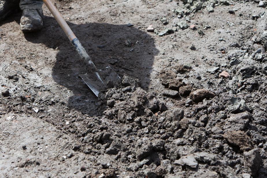 Учёные в ЮАР обнаружили останки нового человеческого вида  - Новости Калининграда