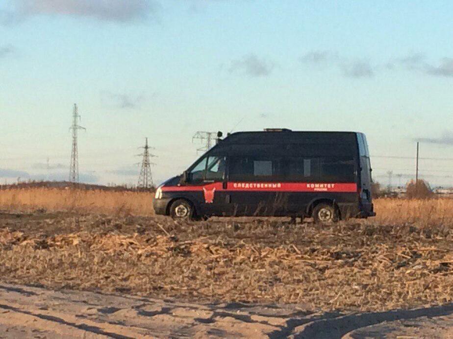 Источник: на берегу Калининградского залива нашли тело пропавшей Камиллы М.  - Новости Калининграда