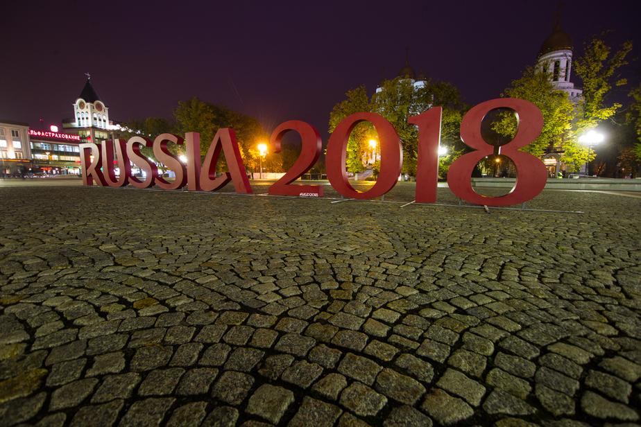 В пятницу на сайте ФИФА откроется голосование по выбору талисмана ЧМ-2018  - Новости Калининграда