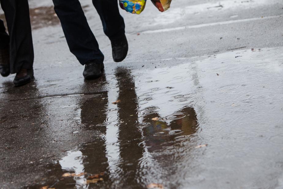 ГИБДД просит водителей быть осторожными на дорогах в дождь  - Новости Калининграда