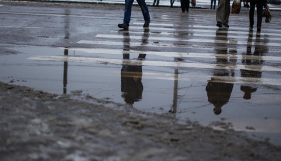 В Калининграде в начале недели температура воздуха превысит климатическую норму