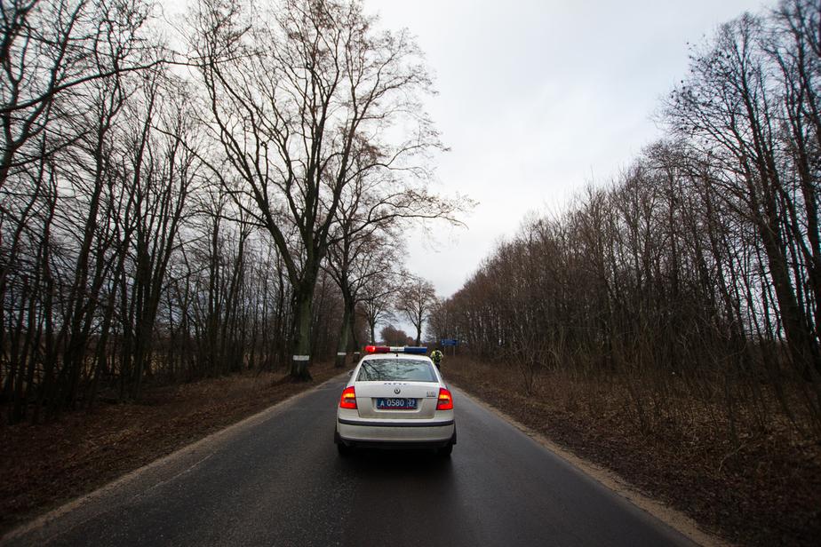 Пять калининградцев пострадали в машинах, улетевших в кюветы и деревья - Новости Калининграда
