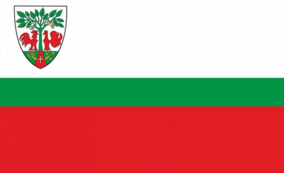 У Гурьевска появился собственный флаг - Новости Калининграда