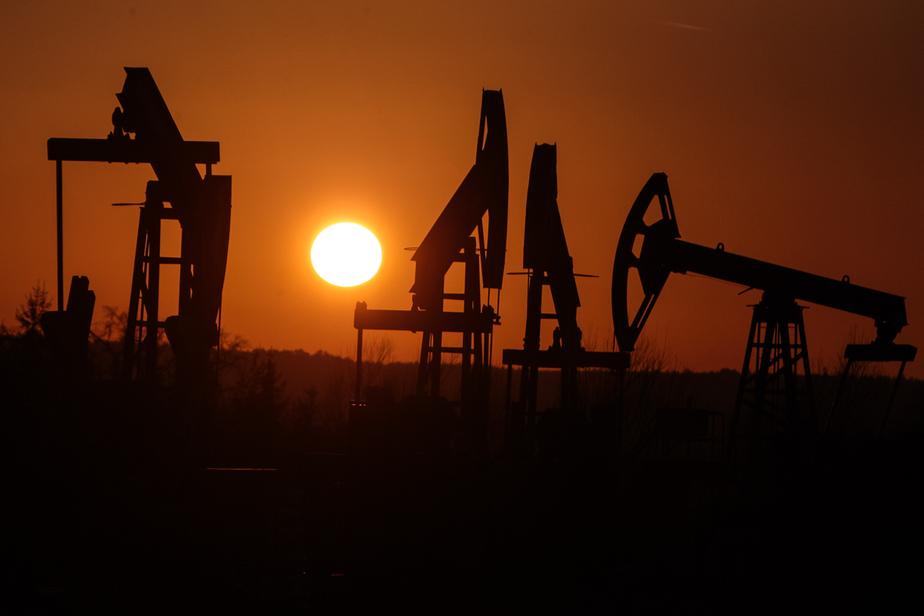Росстат: Россия вышла в мировые лидеры по добыче нефти - Новости Калининграда