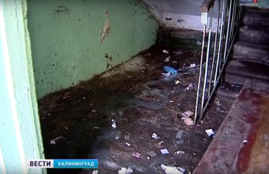 В одном из домов Калининграда более 40 лет нет горячей воды, а подвалы заполнены канализационными стоками - Новости Калининграда