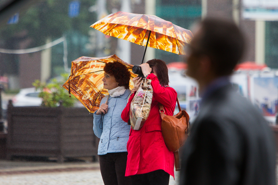 Синоптики: в Калининграде ожидается сильный ветер  - Новости Калининграда