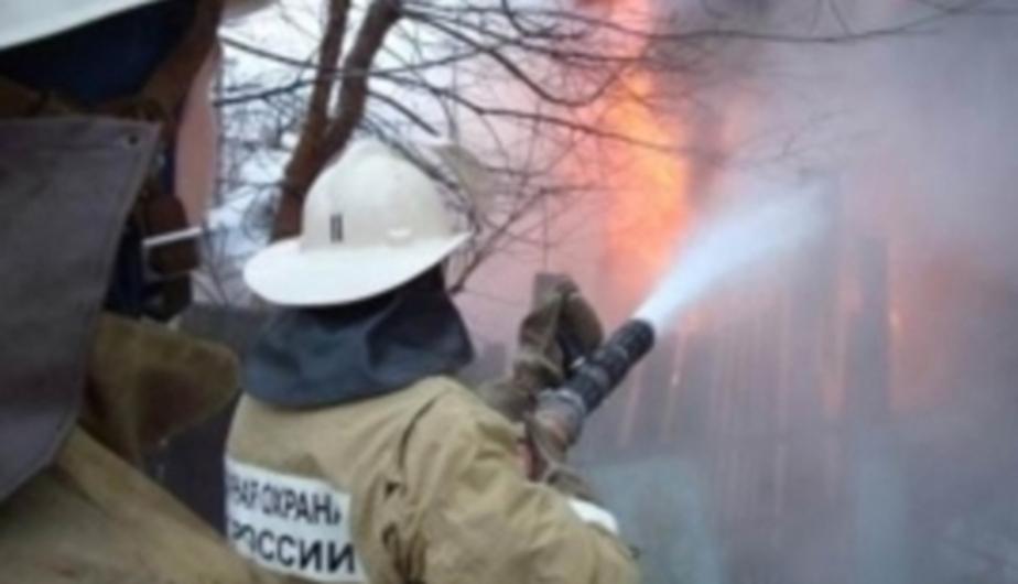 """В садовом обществе """"Пенсионер"""" в Калининграде вновь случился пожар  - Новости Калининграда"""