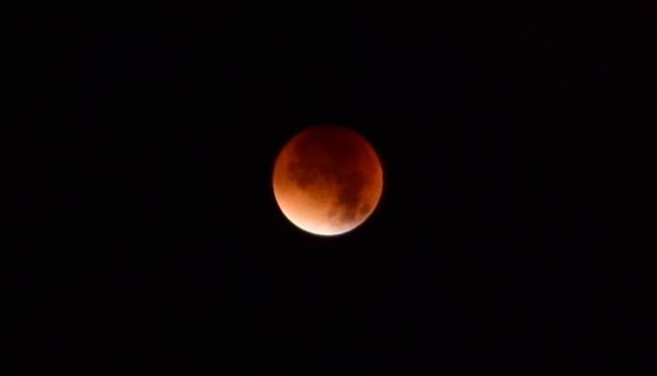 """Астрономы: Лучше всего """"кровавая луна"""" была видна в Калининграде - Новости Калининграда"""