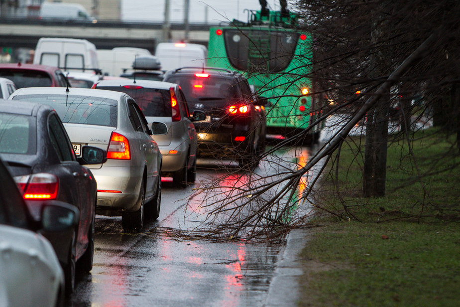 Метеосайты: ветер в Калининградской области стихнет только завтра - Новости Калининграда