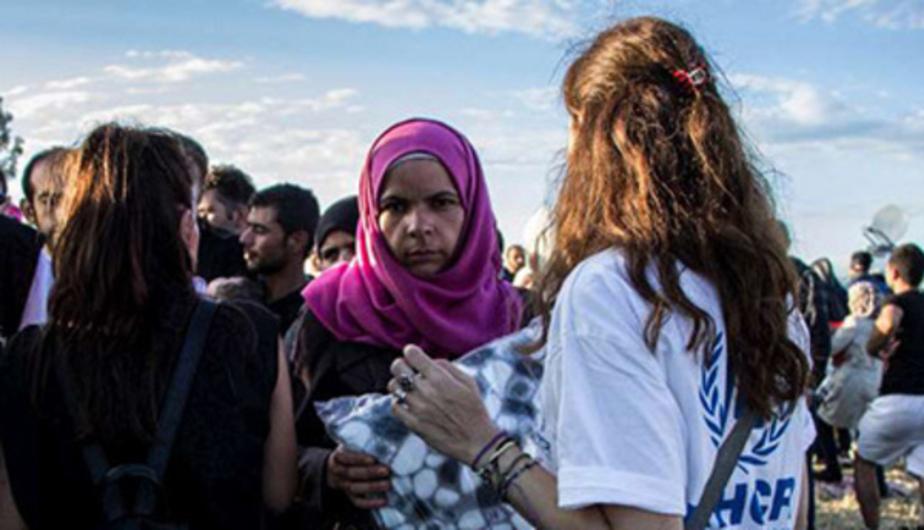 В Финляндии протестующие забросали камнями автобус с беженцами - Новости Калининграда