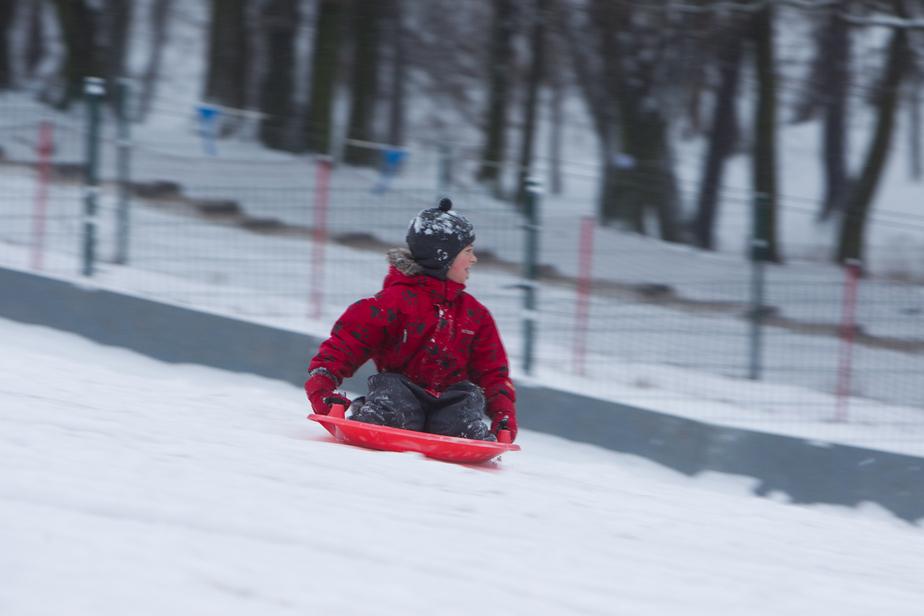 Санки, хоккей и белые мишки: калининградцев приглашают на зимнюю городскую олимпиаду - Новости Калининграда