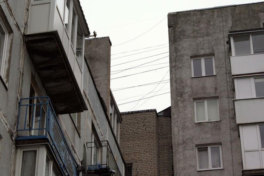 В Калининграде 22-летняя девушка выпала из окна второго этажа - Новости Калининграда