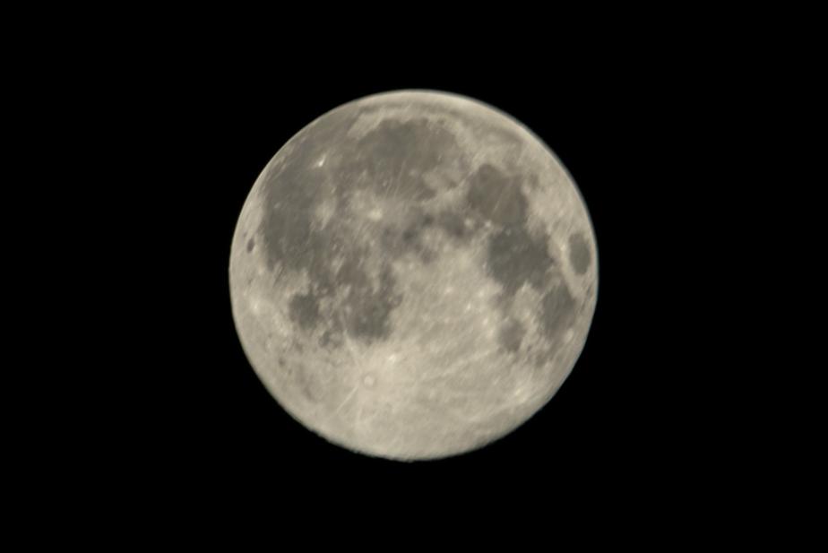 Компания SpaceX отправит двух туристов в полёт вокруг Луны в 2018 году  - Новости Калининграда