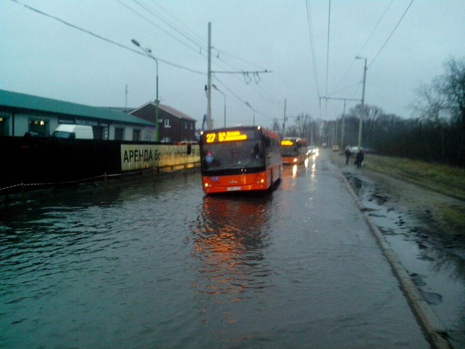 В Калининграде в луже застрял пассажирский автобус, людей эвакуировали при помощи маршрутки - Новости Калининграда