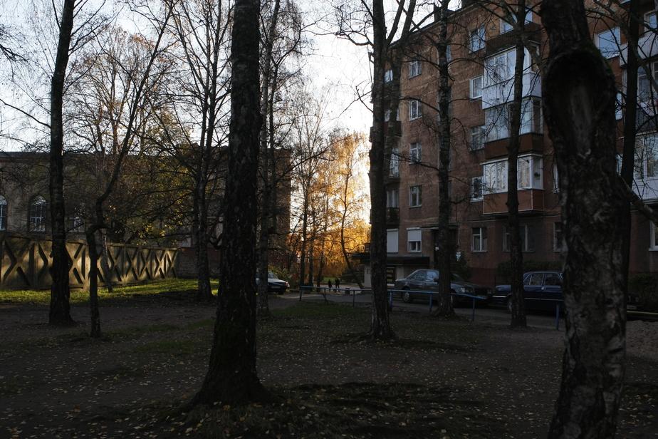 В Калининграде мужчина упал с четвёртого этажа и выжил  - Новости Калининграда