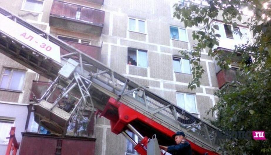 Детский омбудсмен: родителей едва не выпавшего из окна малыша привлекут к ответственности - Новости Калининграда
