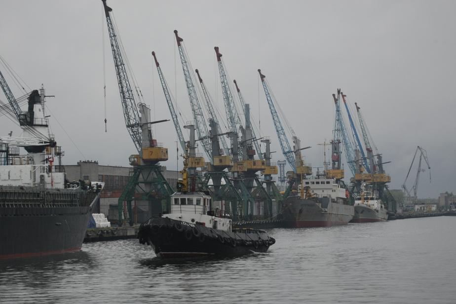 В порту Балтийска приостановлен ввоз 170 тонн сурими из Индии и Вьетнама