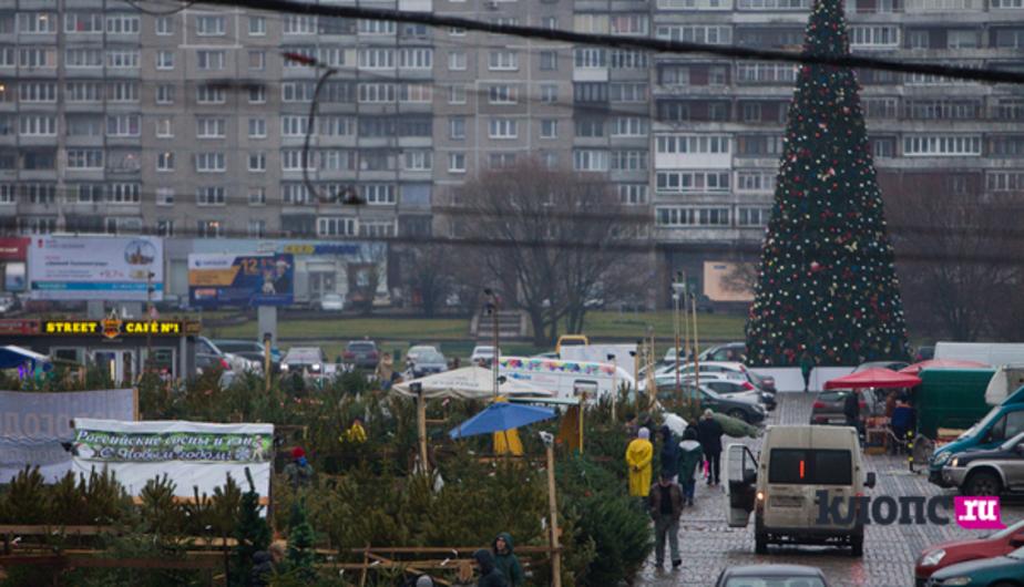 В Калининграде иностранец гонялся за людьми, чтобы отпраздновать Новый год - Новости Калининграда