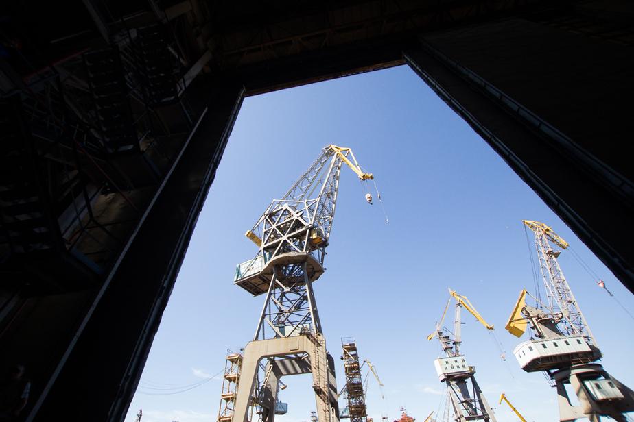 В Калининградскую область не пустили 26 тонн китайской сайры - Новости Калининграда