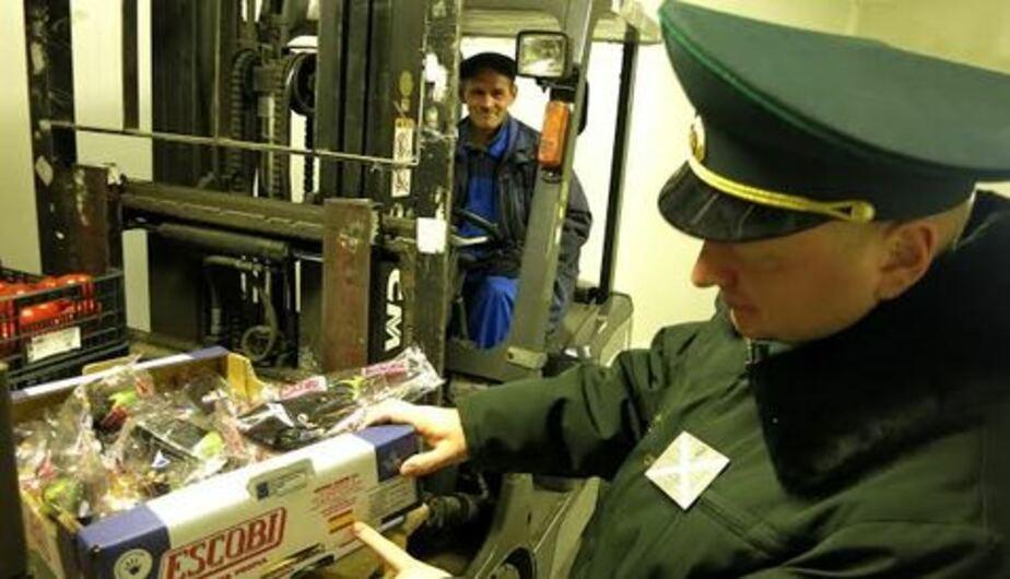 Калининградские таможенники вернули в Турцию тонну винограда - Новости Калининграда