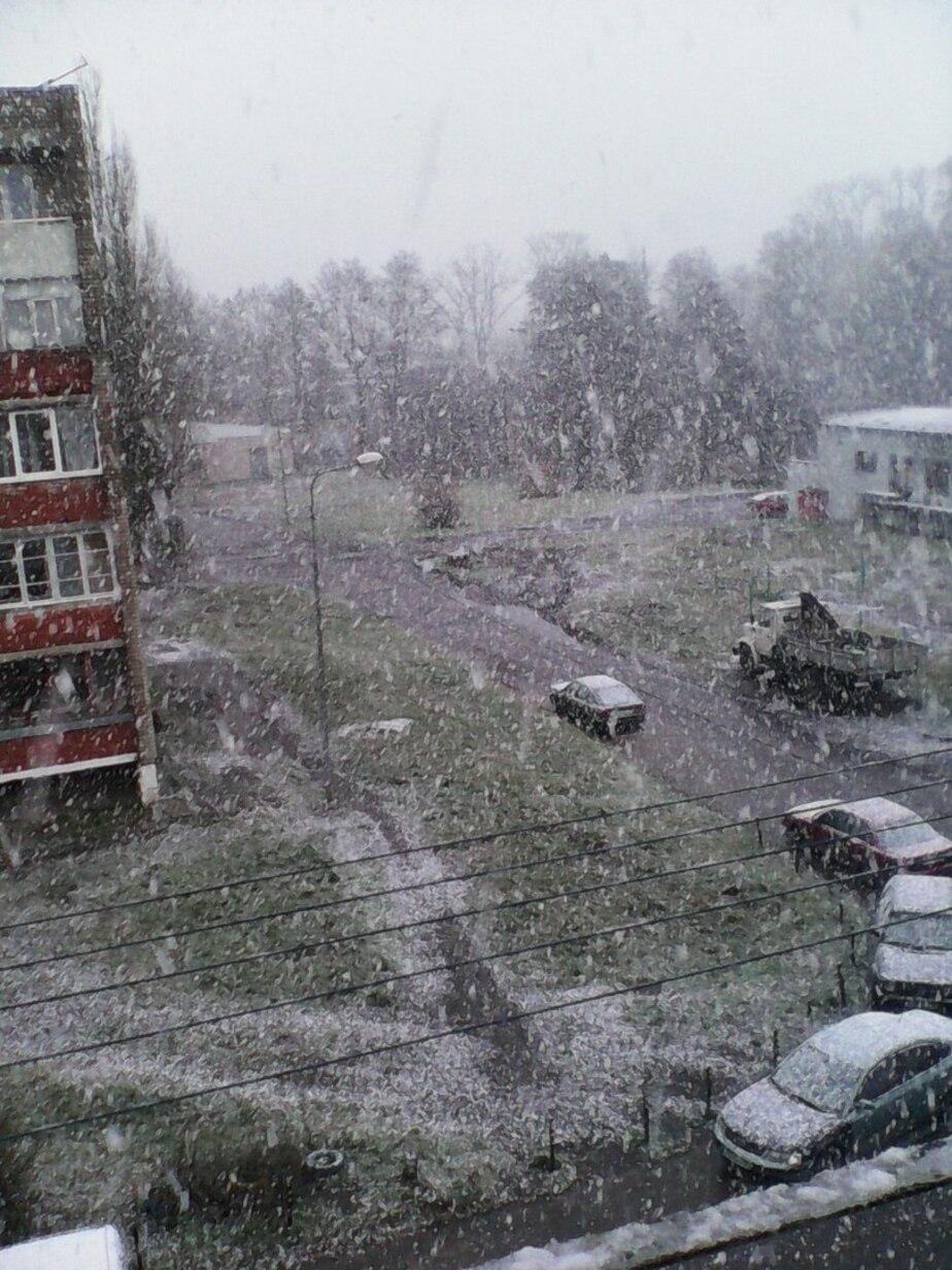 В Калининграде аномальное тепло сменится мокрым снегом - Новости Калининграда